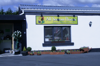 All Seasons Florists Ballaghaderreen - from Tom Sharkey & Sons Ltd.
